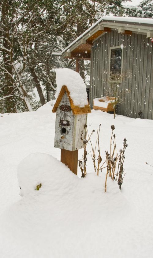 Snowbirdhouse